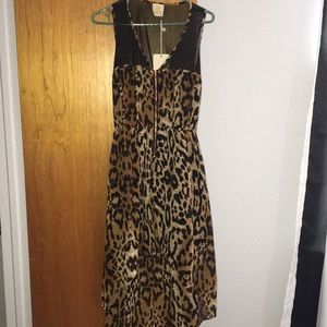 Dresses & Skirts - Leopard & black mesh hi-low dress